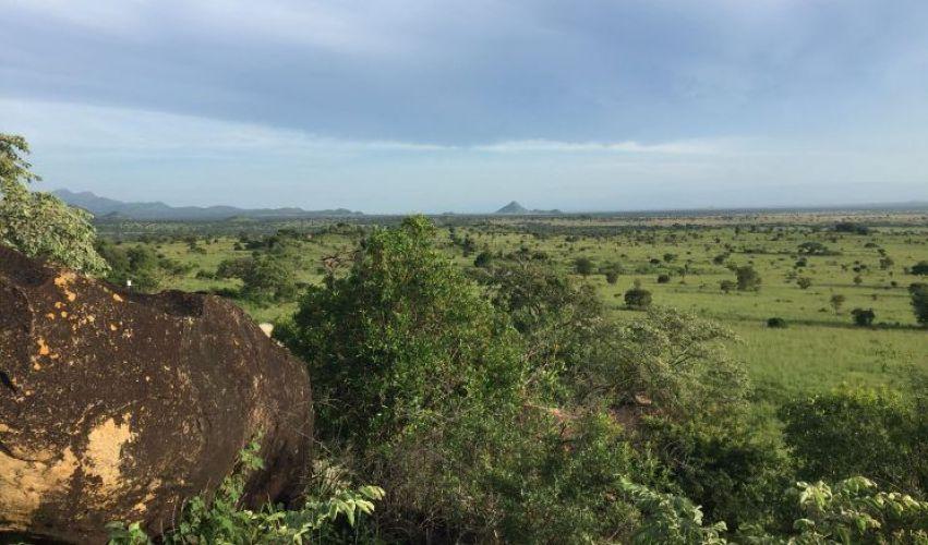 Vistas Kidepo Valley, Uganda
