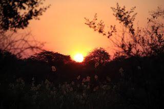 Puesta de sol sobre el Okavango