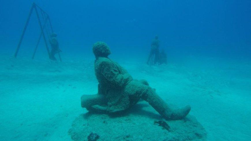 Desregulado Museo atlántico