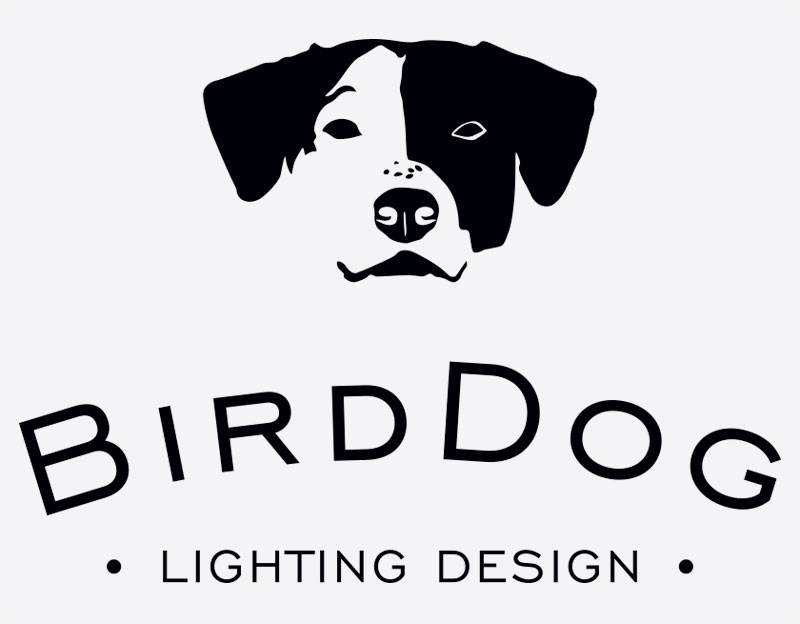 Cronin-Creative-Clarity-By-Design-BirdDog-Lighting-Design