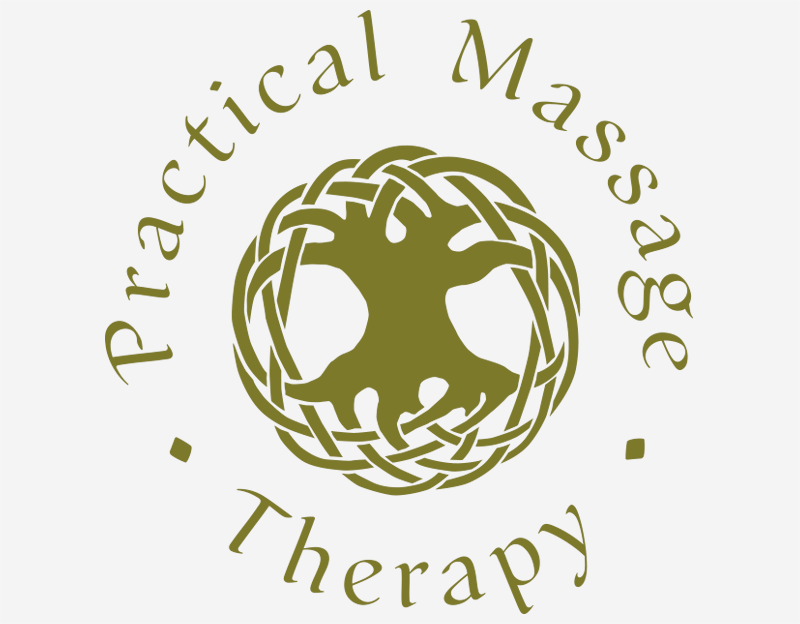 Cronin-Creative-Clarity-By-Design-Practical-Massage-Therapy