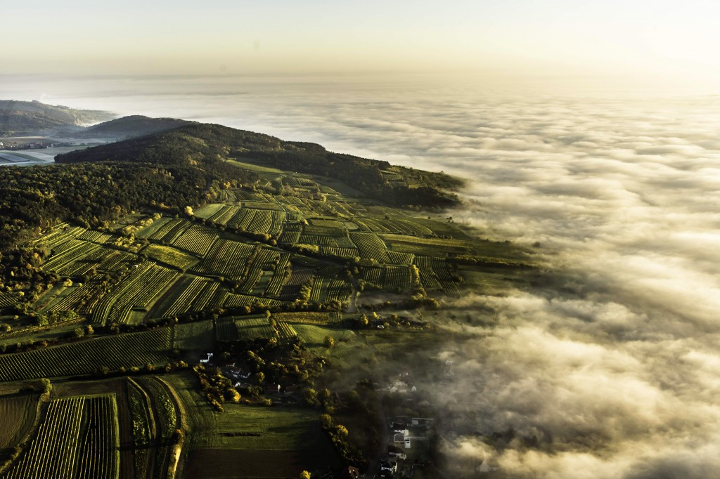 aerial_zwirch_large-1024x682