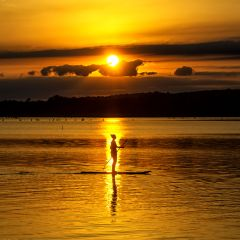 A Guide to Paddleboarding for Beginners