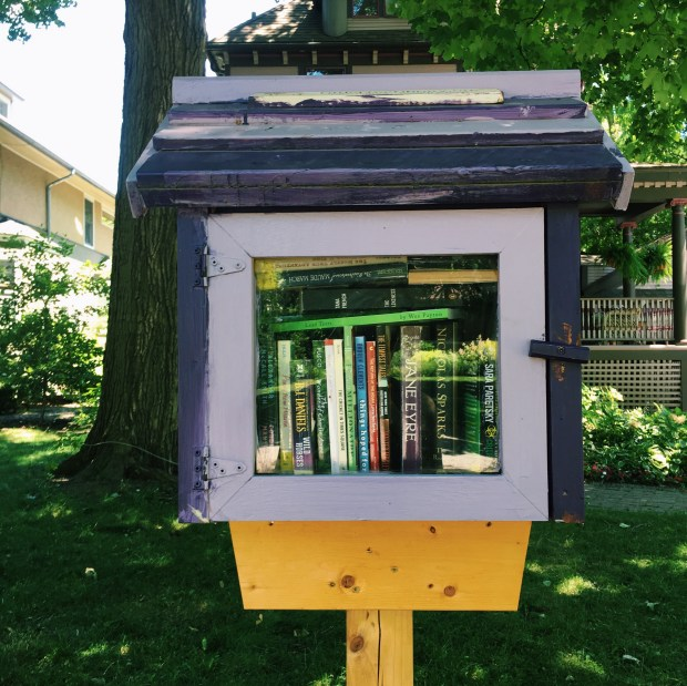 Little Free Library #25