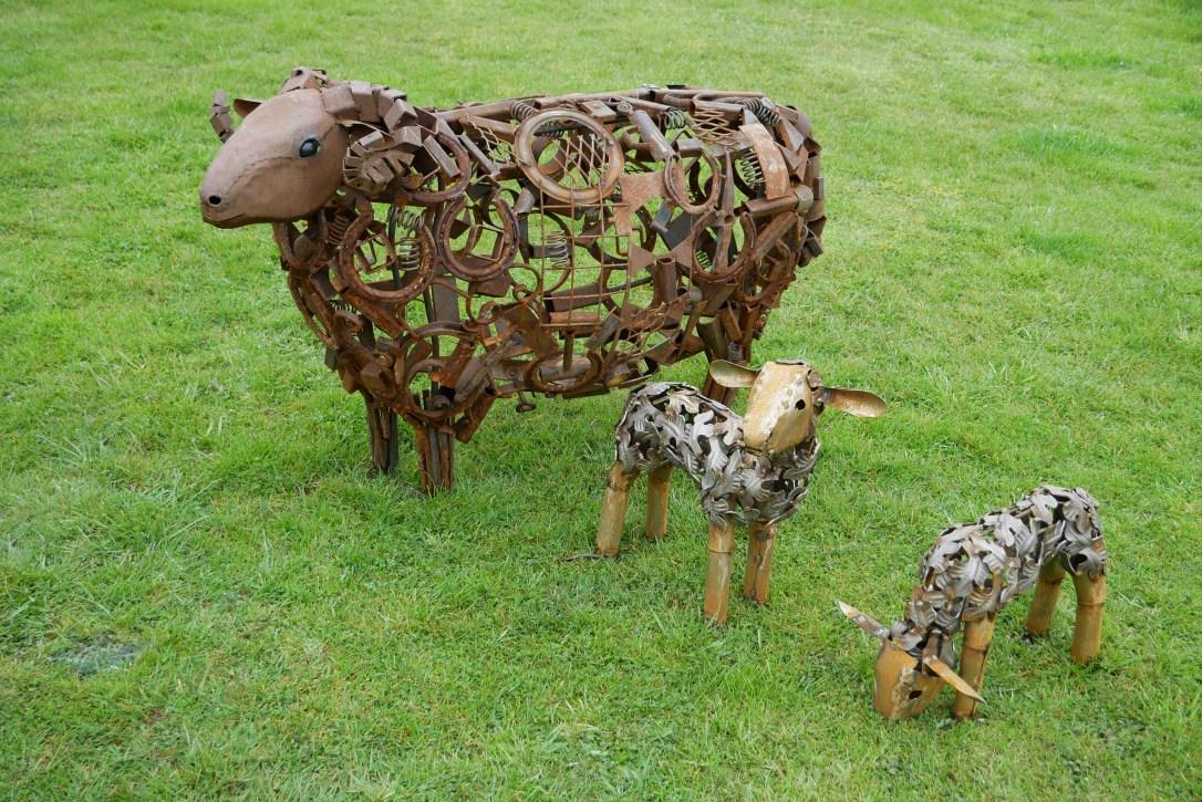 Diccon Dadey Sheep 180331 1 Credit Peter Young