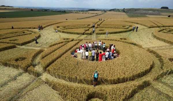 Ce que j'ai appris des crop circles