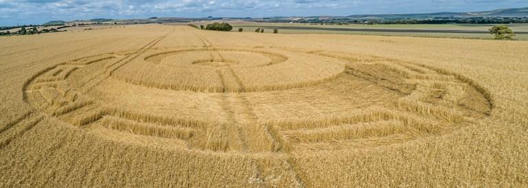 Pourquoi existent-ils des crop circles humains et des crop circles non-humains ?