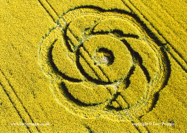 Original Crop Circle, Golden Ball Hill, nr Alton Barnes, Wiltshire