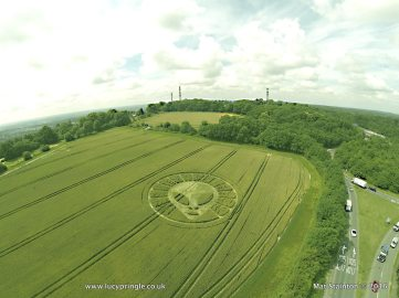 Reigate Hill, Nr Reigate, Surrey 19th July. Wheat. c.120 feet (36.5 m). Alien face with 'headdress'.