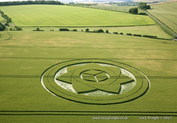 Borham Woods, Lockeridge, Nr Marlborough, Wiltshire. 1st July 2017. Wheat. c.110 feet (33.5m) diameter. Double ringed circle containing seven interlocking petals surrounding a cube motif.