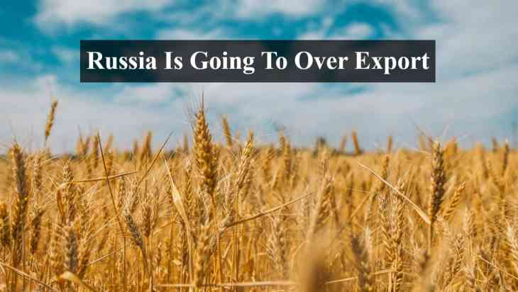 Russia top exporter of wheat
