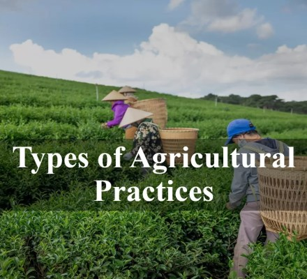 Types of Agricultural Practices