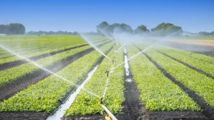 what sometimes occurs when reclaimed water is used in agriculture