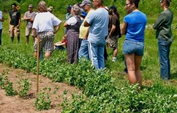 On Saturday, July 20, Carrington Will Host An Organic Plot Tour