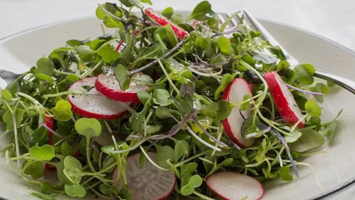 Microgreens In Diet