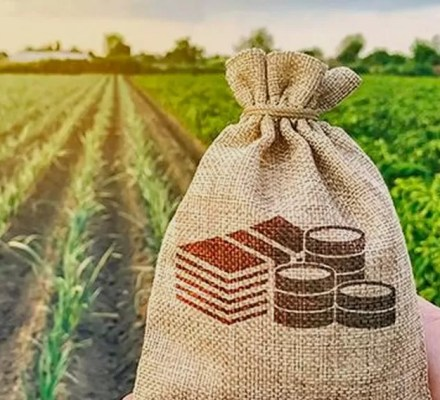 Ontario Federal Assistance To Improve Food Security