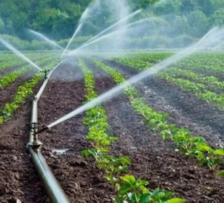 Pakistan Have Water Shortage