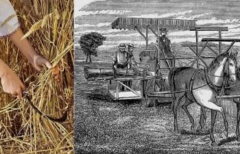 Scottish Agricultural Revolution