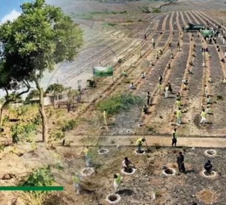 Pakistan Fighting Climate Change