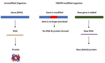 A CRISPR-Cas9 system.
