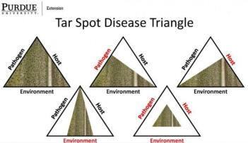 A diagram on how the pathogen, host, and environment can influence tar spot disease triangle. Red denotes the factor that's being reduced, such as decreased inoculum viability, reduced host susceptibility, and/or unfavorable environmental conditions leading to less disease.
