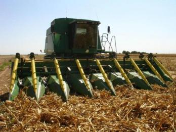 Roll-A-Cone Corn Lifters with integrated paddle reel.