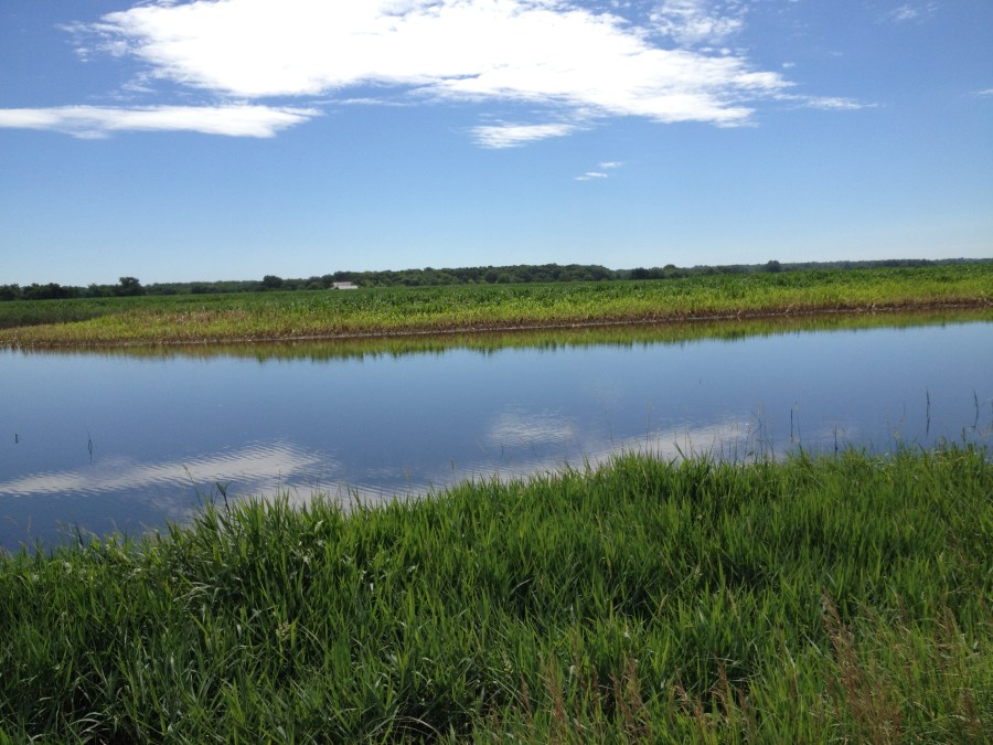 Figure 11. Oxbow holding water in the middle of a corn field.
