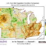 U.S. Corn Belt Vegetation Condition