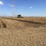 KTIC Radio Extension Corner: On-Farm Research