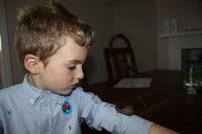 Thomas et les escargots - 17.05 (8)