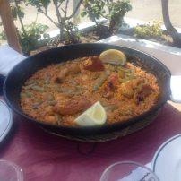 Valence - avril 2016 - la albufera - photos david (16)-800