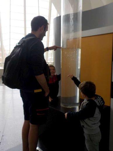 Valence - avril 2016 - musée des sciences (18)-800