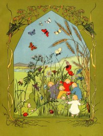 The story of the root children - été