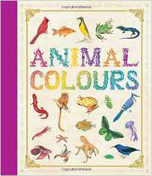 animals-colours