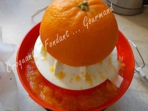 A Orange DSCN2356_32049