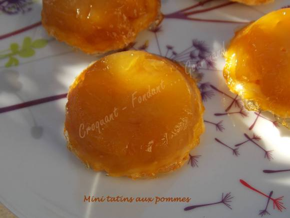 Mini tatins aux pommes DSCN1230
