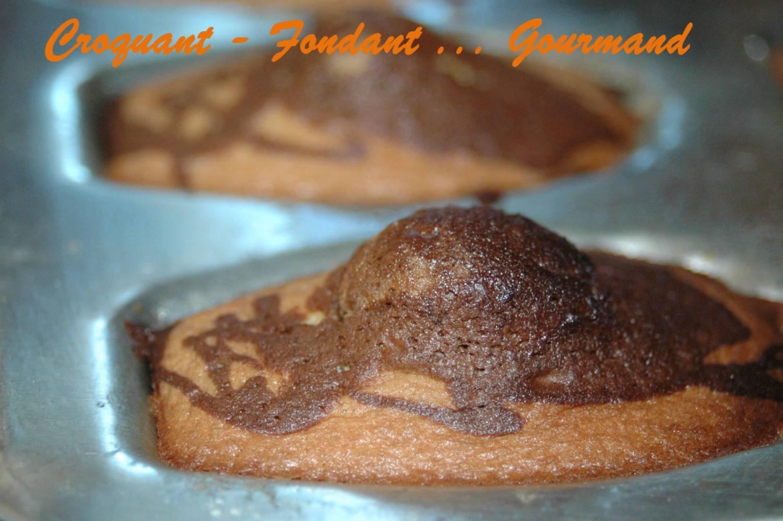 madeleines marbrées au chocolat - novembre 2008 039 copie