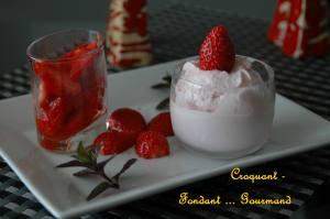 Glace au yaourt - mai 2009 231 copie