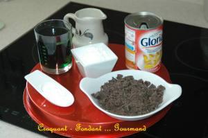 Glace menthe & pépites de chocolat - juin 2009 075 copie