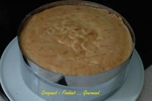 Cheesecake aux abricots - aout 2009 074 copie