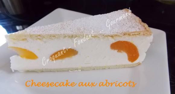 Cheesecake aux abricotsDSCN7411