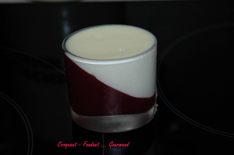 Panna cotta au chocolat blanc et à la framboise - septembre 2009 159 copie