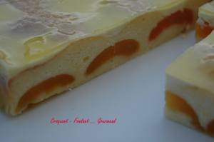 Régal aux abricots - octobre 2009 051 copie