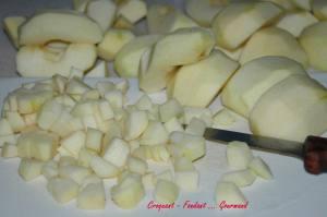 Croustillant de pommes - octobre 2009 105 copie