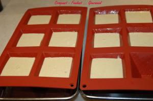 Panna cotta au foie gras - octobre 2009 231 copie