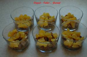 Tiramisu orange et pain d'épices - DSC_2404