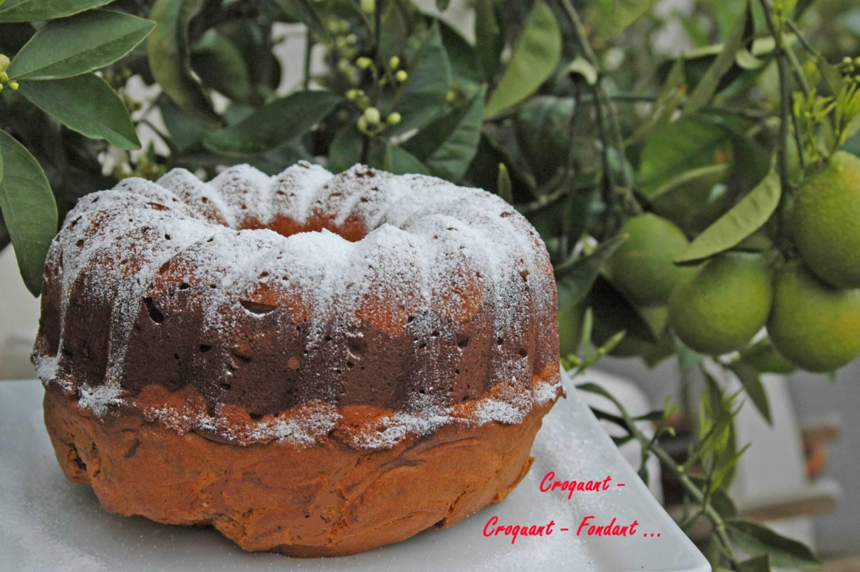 Gâteau marbré -DSC_4065_1631 R