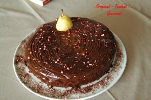 Moelleux au chocolat - DSC_7113_4932