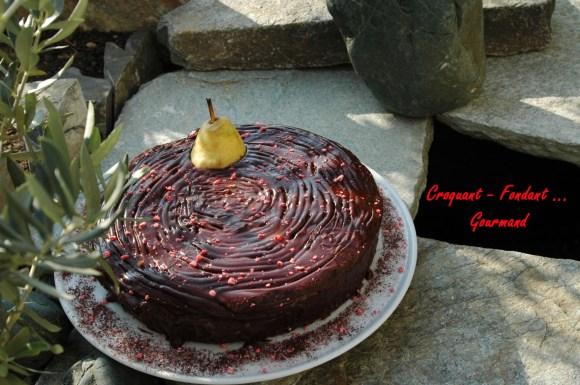 Moelleux au chocolat de Micky - DSC_7116_4935