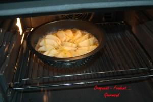 Panna cotta pralinée-pommes tatin - DSC_7369_5178